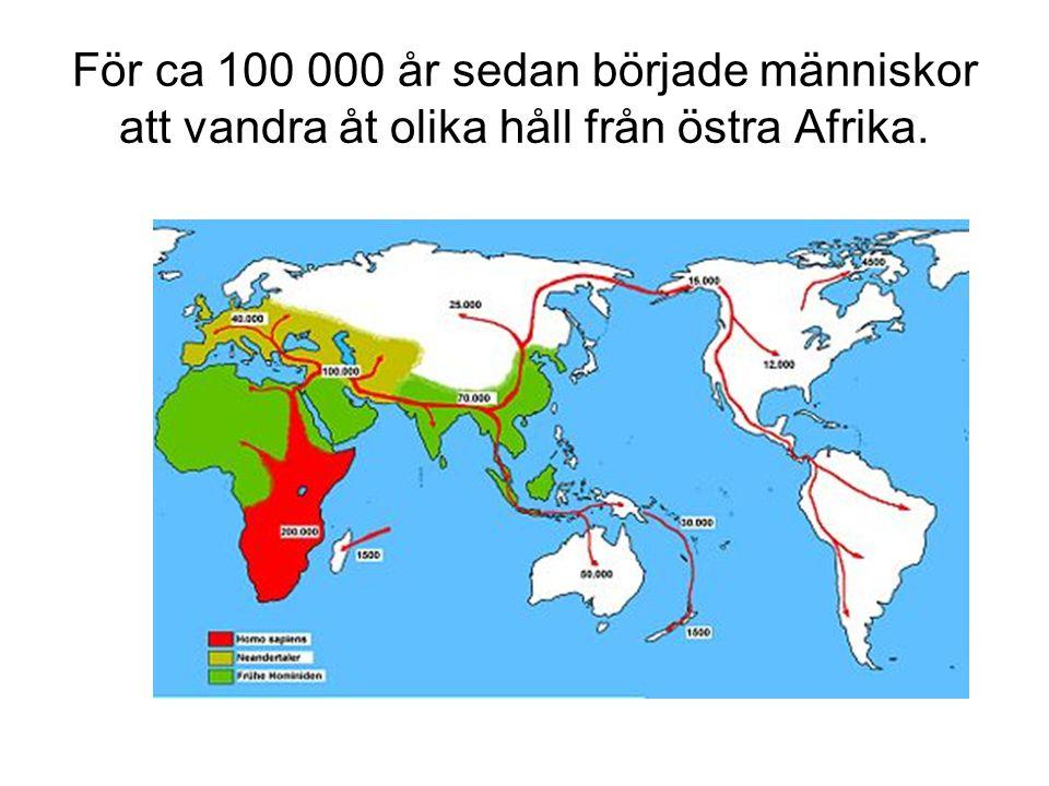 För ca 100 000 år sedan började människor att vandra åt olika håll från östra Afrika.