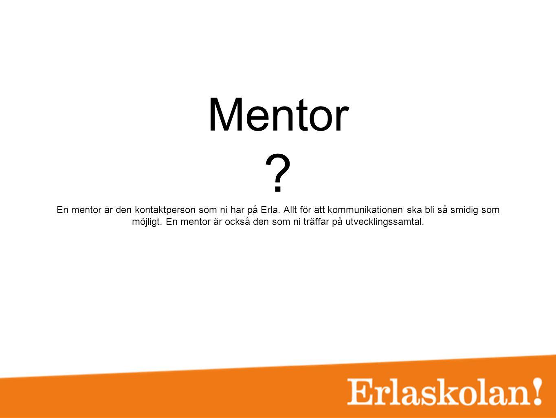 Mentor ? En mentor är den kontaktperson som ni har på Erla. Allt för att kommunikationen ska bli så smidig som möjligt. En mentor är också den som ni