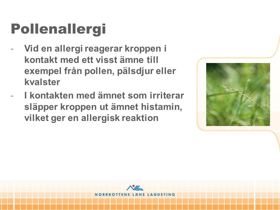 -Vid en allergi reagerar kroppen i kontakt med ett visst ämne till exempel från pollen, pälsdjur eller kvalster -I kontakten med ämnet som irriterar s