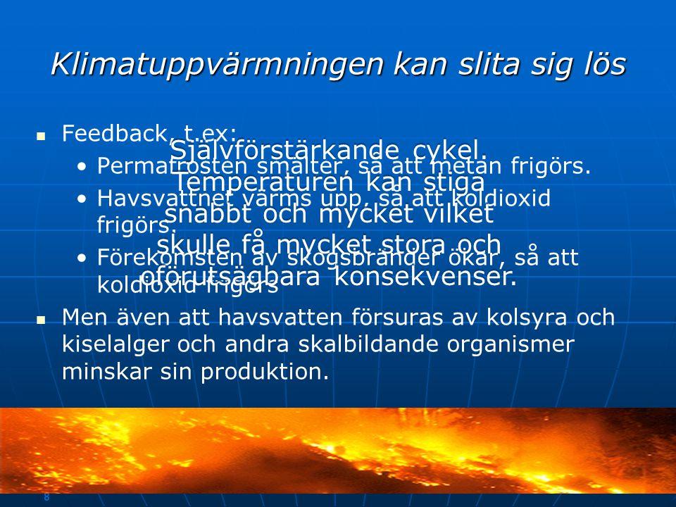 7 Arter kan försvinna helt och hållet även i Sverige   Klimathotade: • •Fjällräv • •Fjälluggla • •Harr och laxöring – trivs i näringsfattiga miljöer