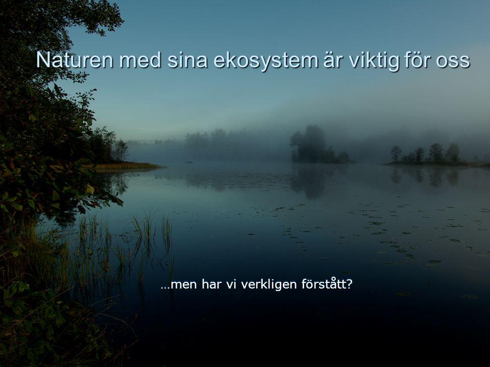 Källan: Lammi & Tynkkynen 2001 och IPCC 11 Utsläppen måste skäras ner drastiskt   Globalt 50-85% (till 2050)   I Sverige 60%   I Finland, som pr
