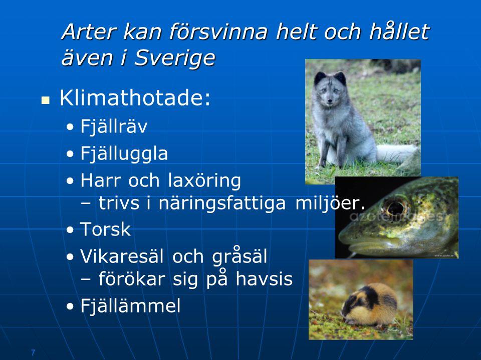 6 Källa: SWECLIM. Swedish Regional Climate Modelling Program och Naturvårdsverket Temperaturen i Sverige stiger till 2100, speciellt på vintern   Sv