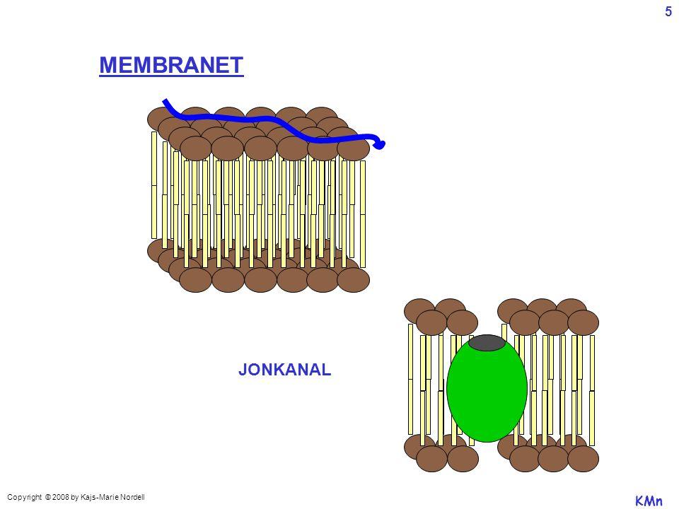 JONKANAL MEMBRANET KMn Copyright © 2008 by Kajs-Marie Nordell 5