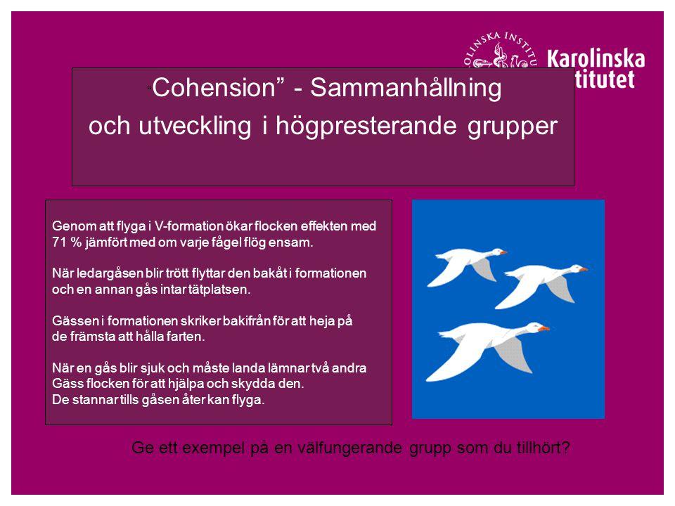 Cohension - Sammanhållning och utveckling i högpresterande grupper Genom att flyga i V-formation ökar flocken effekten med 71 % jämfört med om varje fågel flög ensam.