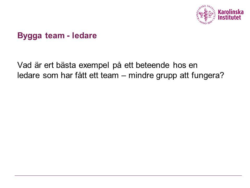 Bygga team – ledaren har stor betydelse Få teamet att tro på sin förmåga (Guzzo, Yost, Campbell, Shea, 1993; Little & Madigan, 1997; Silver & Bufanio, 1996, 1997).