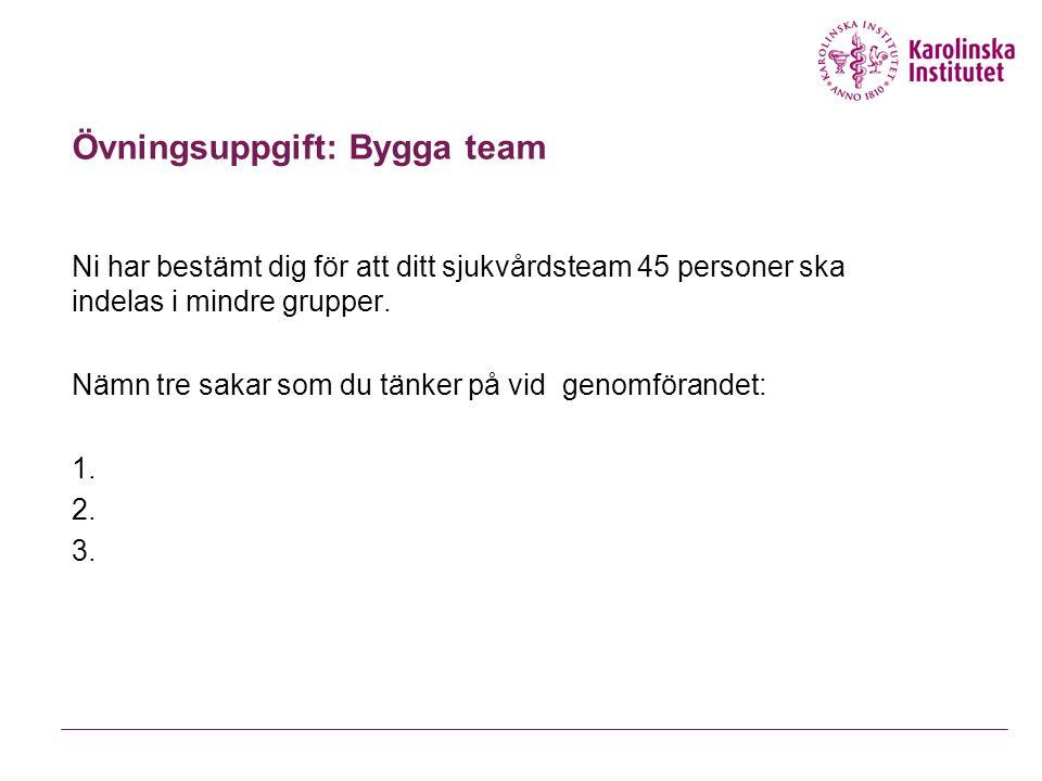 Hilmar TH. Hilmarsson Kompetensutveckling 49 Omedvetenhet: Risker för grupper. Risker för ledarskap.