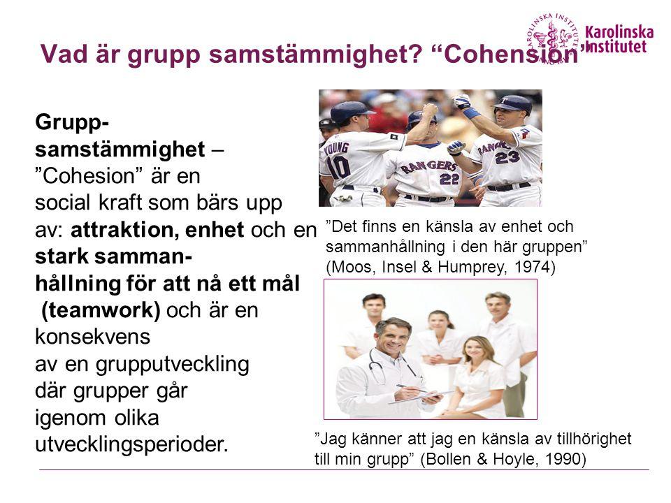 Vad är grupp samstämmighet.