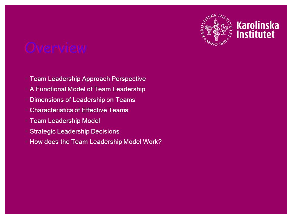 Team Leadership Approach Leadership Theory and Practice, 3/e Peter G. Northouse, Ph.D.