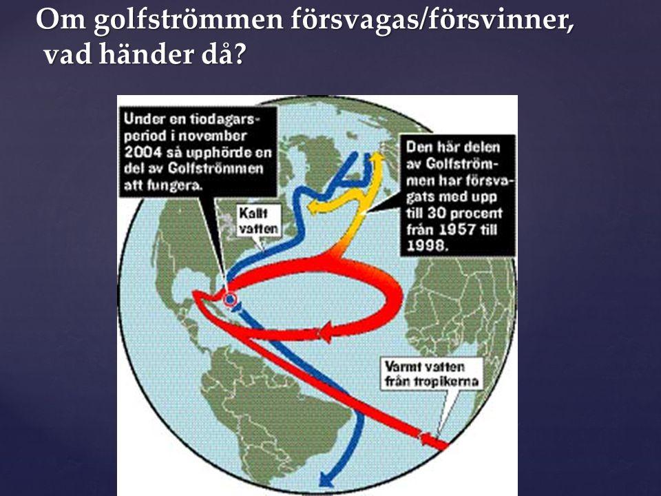 Om golfströmmen försvagas/försvinner, vad händer då?