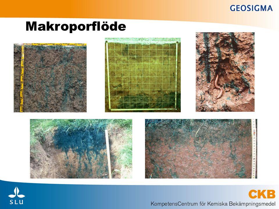 Pesticidprocesser (1) • Sorption (fastläggning, bindning): • Fördröja läckage genom att minska koncentrationen i markvattnet • Antas ske i huvudsak till organiskt kol i marken • Beskrivs genom ämnesegenskapen K oc (ml/g) • Beskriver hur starkt ämnet fastläggs till organiskt kol • Den faktiska fastläggningen beror alltså både på ämnet och kolhalt i marken • Underskattar adsorption i alven = säkerhetsfaktor