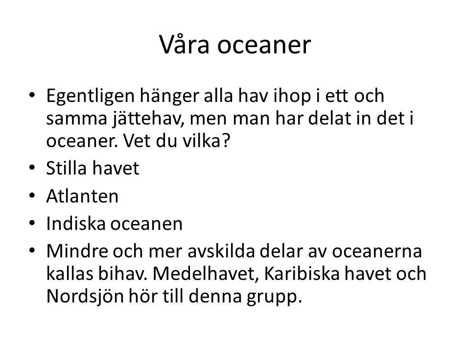 Våra oceaner • Egentligen hänger alla hav ihop i ett och samma jättehav, men man har delat in det i oceaner. Vet du vilka? • Stilla havet • Atlanten •