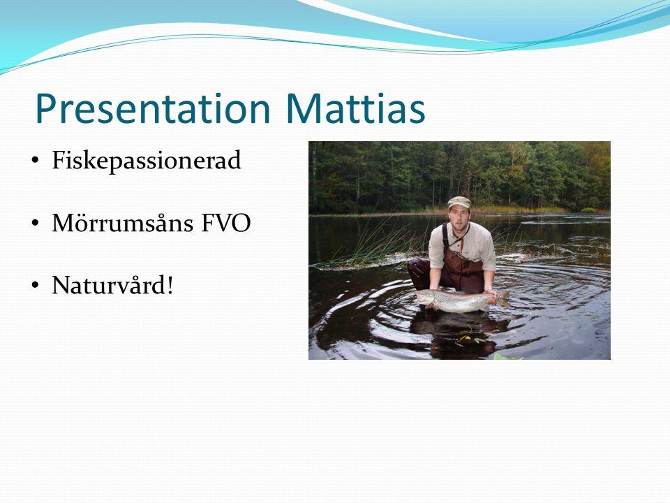 Presentation Mattias • Fiskepassionerad • Mörrumsåns FVO • Naturvård!