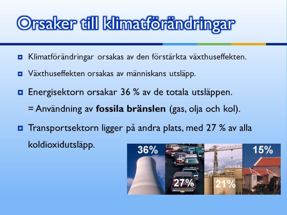  Klimatförändringar orsakas av den förstärkta växthuseffekten.  Växthuseffekten orsakas av människans utsläpp.  Energisektorn orsakar 36 % av de to