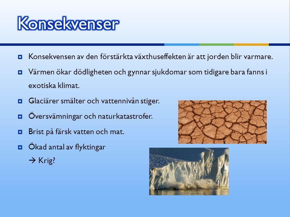  Konsekvensen av den förstärkta växthuseffekten är att jorden blir varmare.  Värmen ökar dödligheten och gynnar sjukdomar som tidigare bara fanns i