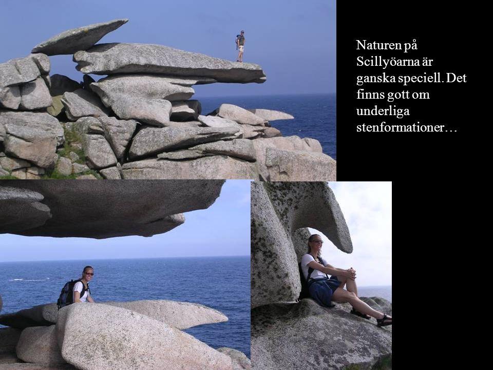 Naturen på Scillyöarna är ganska speciell. Det finns gott om underliga stenformationer…