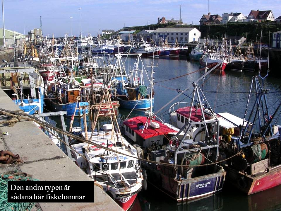 Fiskehamnarna är gratis men sanslöst smutsiga.