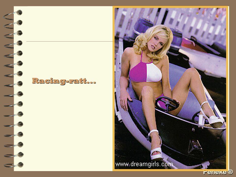 Peneke ® Racing-ratt...