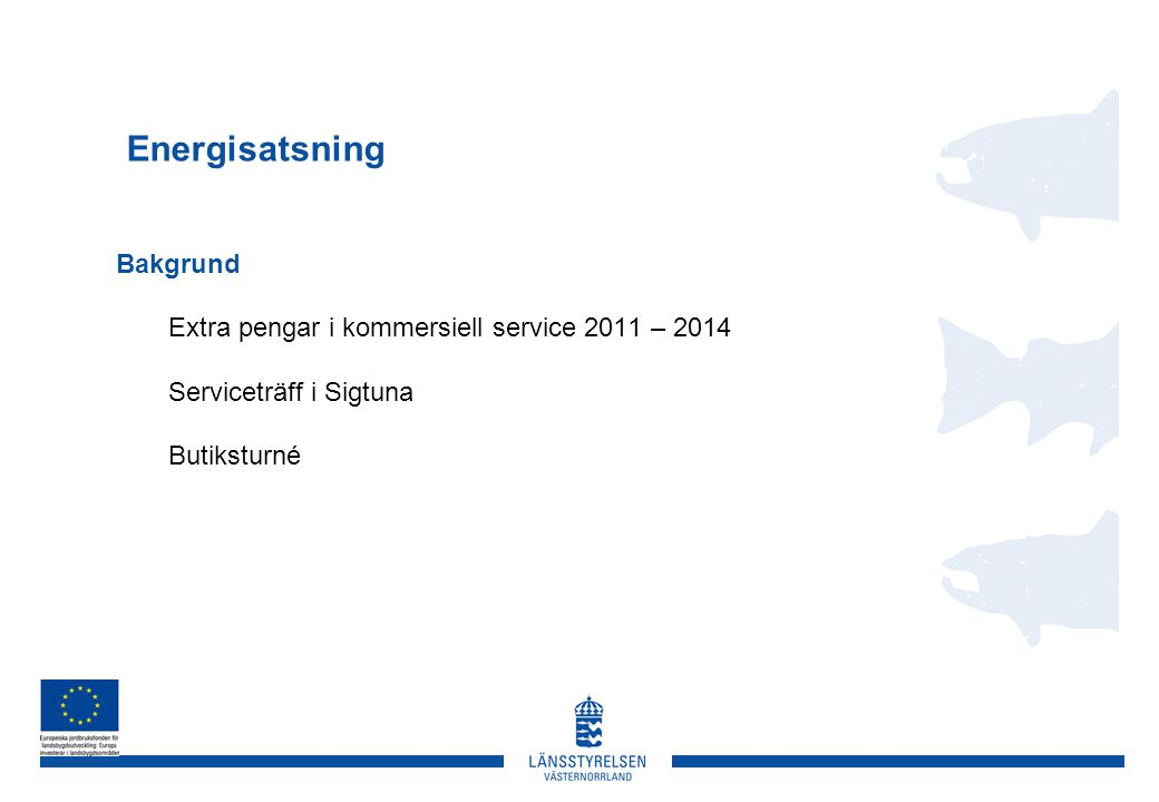 Energisatsning Bakgrund Extra pengar i kommersiell service 2011 – 2014 Serviceträff i Sigtuna Butiksturné