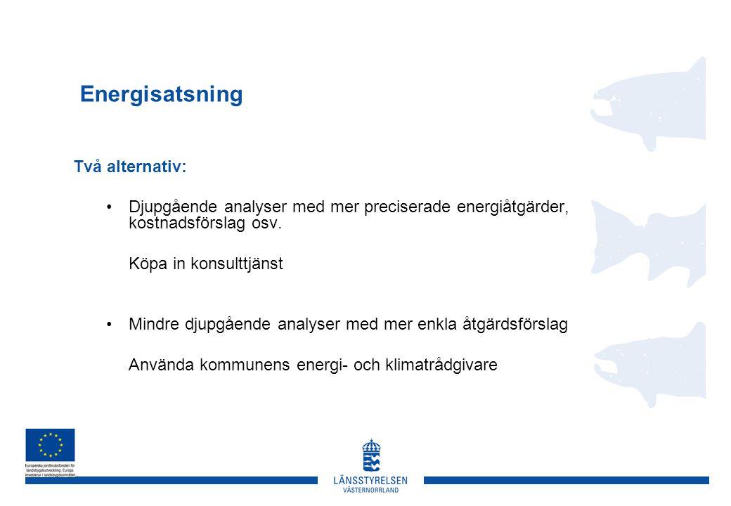 Energisatsning Två alternativ: •Djupgående analyser med mer preciserade energiåtgärder, kostnadsförslag osv.