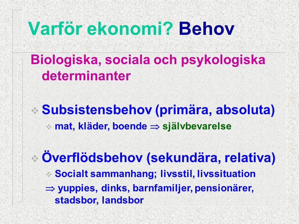 Biologiska, sociala och psykologiska determinanter  Subsistensbehov (primära, absoluta)  mat, kläder, boende  självbevarelse  Överflödsbehov (seku