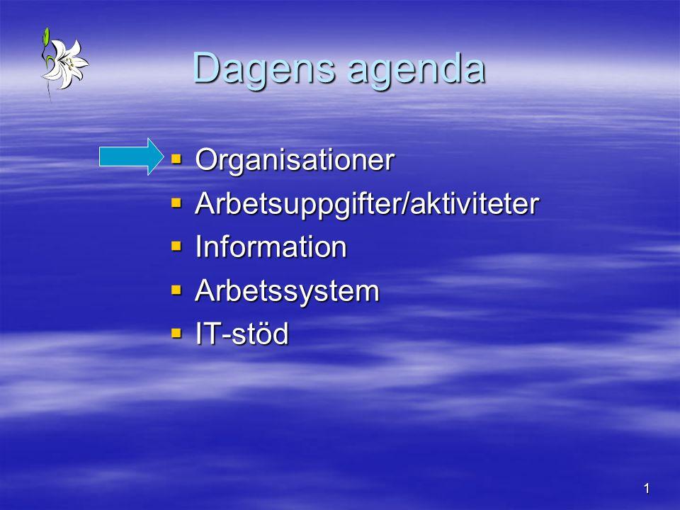 1 Dagens agenda  Organisationer  Arbetsuppgifter/aktiviteter  Information  Arbetssystem  IT-stöd