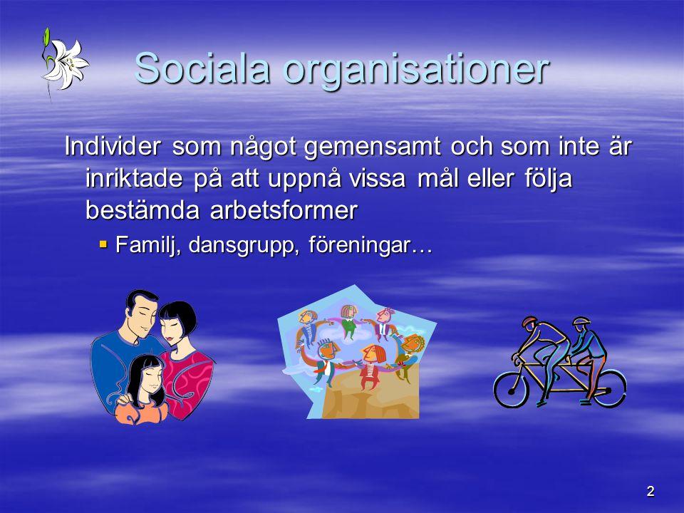 2 Sociala organisationer Individer som något gemensamt och som inte är inriktade på att uppnå vissa mål eller följa bestämda arbetsformer  Familj, da