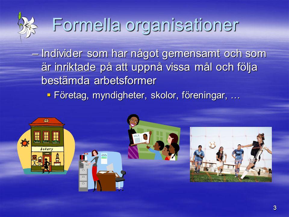 3 Formella organisationer –Individer som har något gemensamt och som är inriktade på att uppnå vissa mål och följa bestämda arbetsformer  Företag, my