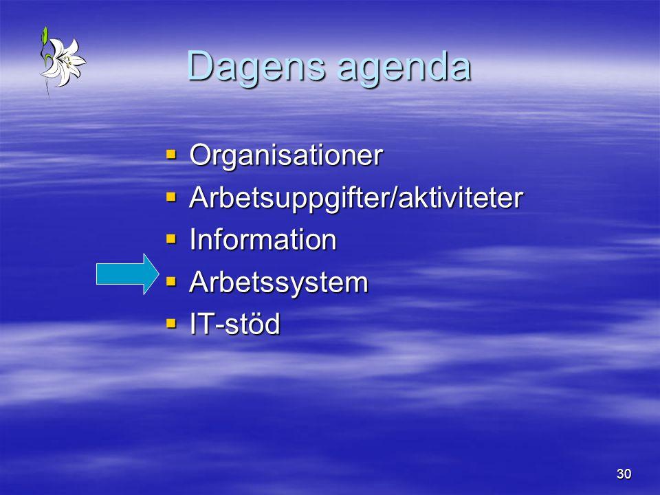 30 Dagens agenda  Organisationer  Arbetsuppgifter/aktiviteter  Information  Arbetssystem  IT-stöd