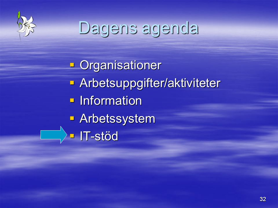 32 Dagens agenda  Organisationer  Arbetsuppgifter/aktiviteter  Information  Arbetssystem  IT-stöd