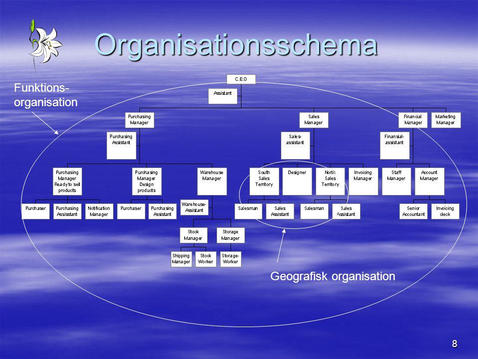 8 Organisationsschema Funktions- organisation Geografisk organisation