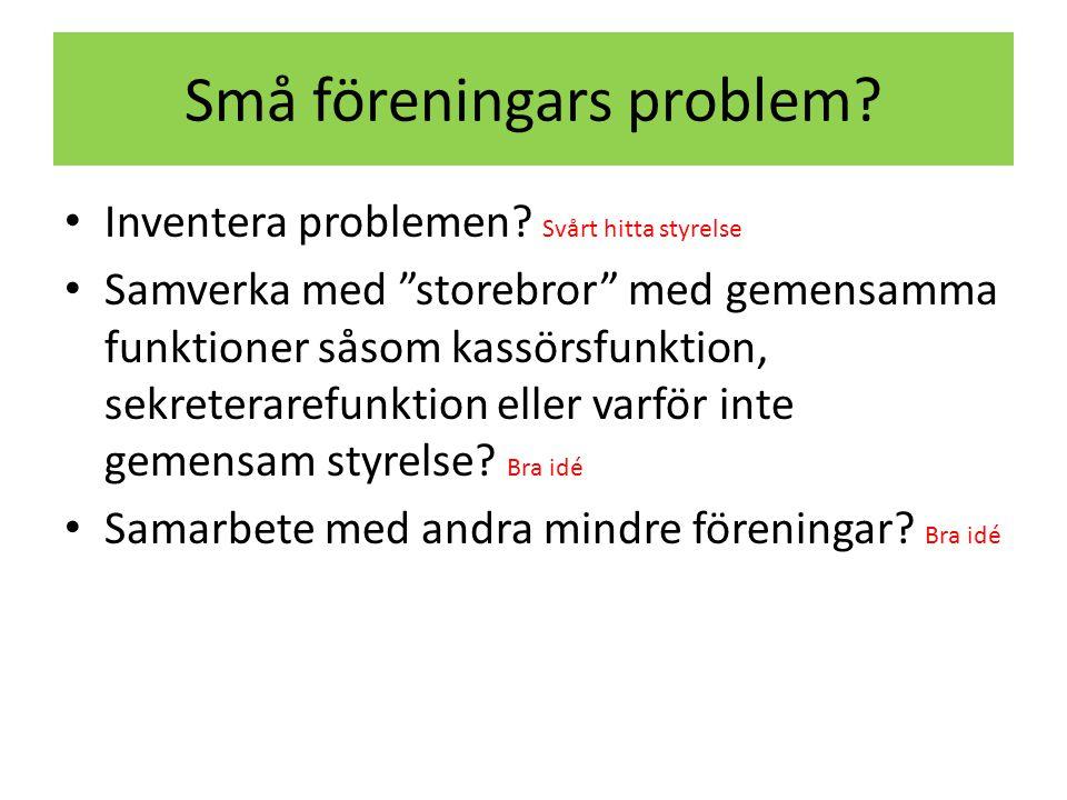 Små föreningars problem. • Inventera problemen.