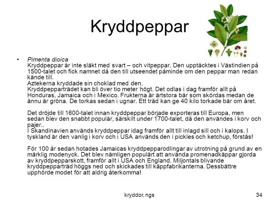 kryddor, ngs34 Kryddpeppar •Pimenta dioica Kryddpeppar är inte släkt med svart – och vitpeppar. Den upptäcktes i Västindien på 1500-talet och fick nam