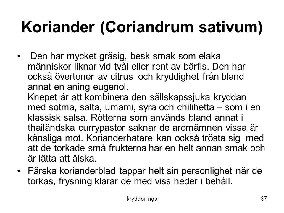 kryddor, ngs37 Koriander (Coriandrum sativum) • Den har mycket gräsig, besk smak som elaka människor liknar vid tvål eller rent av bärfis. Den har ock