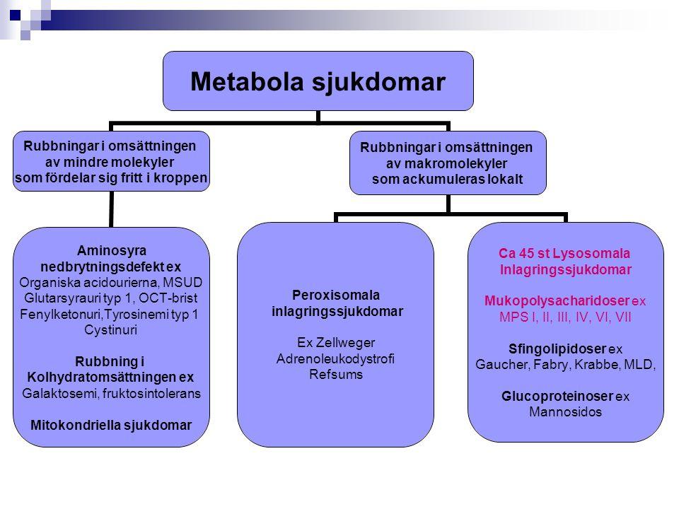 Metabola sjukdomar Rubbningar i omsättningen av mindre molekyler som fördelar sig fritt i kroppen Aminosyra nedbrytningsdefekt ex Organiska acidourier