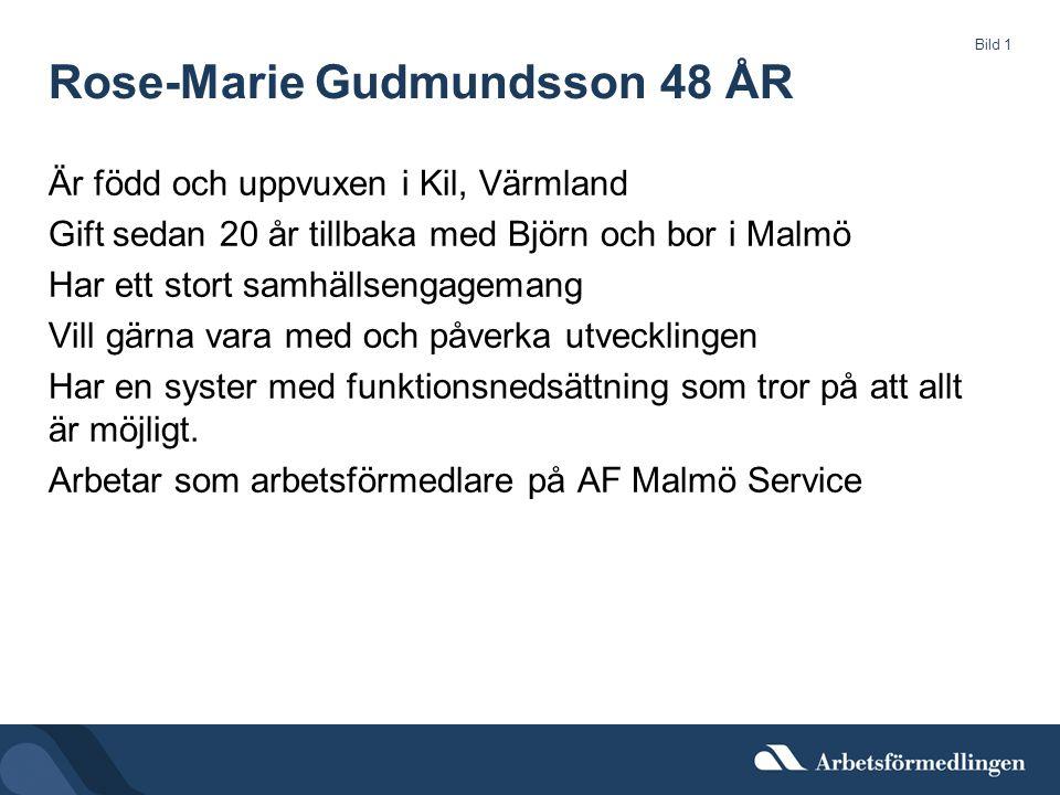 Rose-Marie Gudmundsson 48 ÅR Är född och uppvuxen i Kil, Värmland Gift sedan 20 år tillbaka med Björn och bor i Malmö Har ett stort samhällsengagemang Vill gärna vara med och påverka utvecklingen Har en syster med funktionsnedsättning som tror på att allt är möjligt.