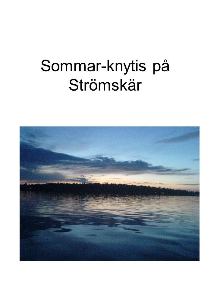 Sommar-knytis på Strömskär