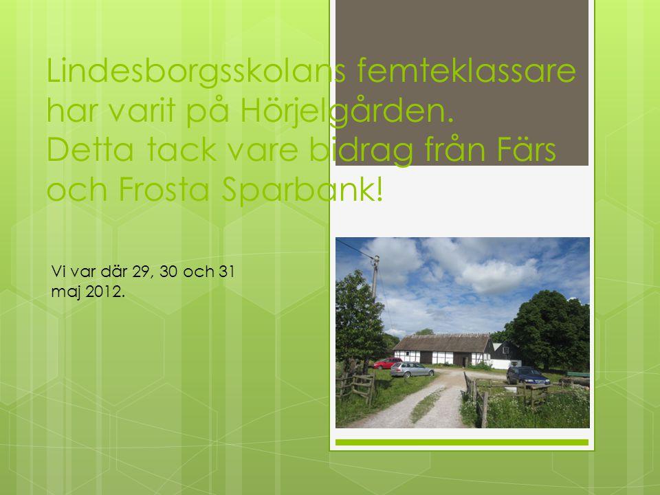 Lindesborgsskolans femteklassare har varit på Hörjelgården. Detta tack vare bidrag från Färs och Frosta Sparbank! Vi var där 29, 30 och 31 maj 2012.