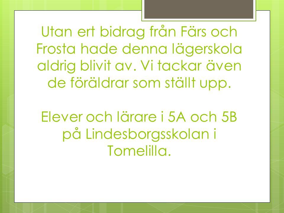 Utan ert bidrag från Färs och Frosta hade denna lägerskola aldrig blivit av. Vi tackar även de föräldrar som ställt upp. Elever och lärare i 5A och 5B