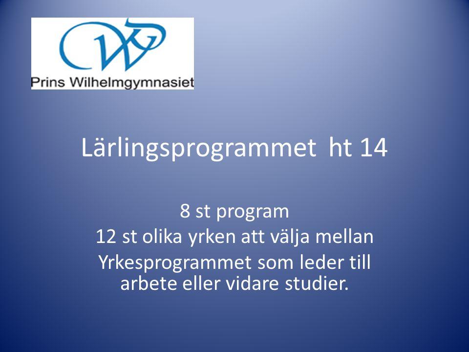 Lärlingsprogrammet ht 14 8 st program 12 st olika yrken att välja mellan Yrkesprogrammet som leder till arbete eller vidare studier.