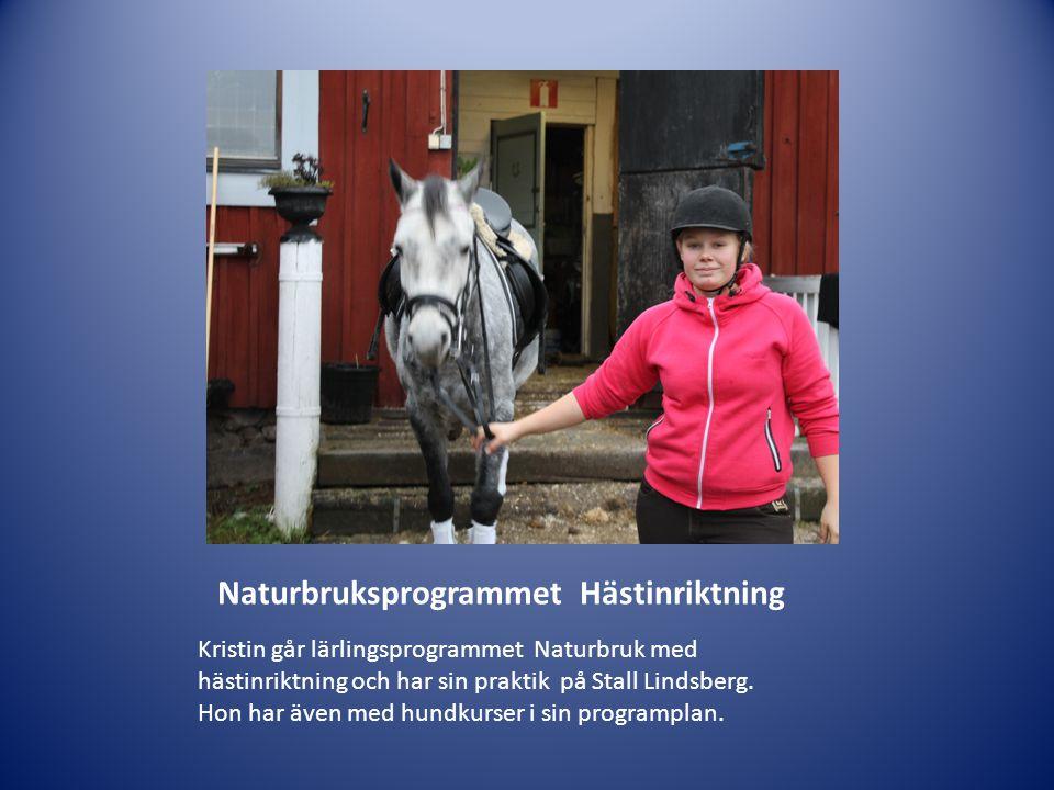 Naturbruksprogrammet Hästinriktning Kristin går lärlingsprogrammet Naturbruk med hästinriktning och har sin praktik på Stall Lindsberg. Hon har även m