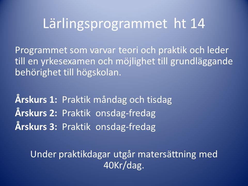 Lärlingsprogrammet ht 14 Programmet som varvar teori och praktik och leder till en yrkesexamen och möjlighet till grundläggande behörighet till högsko