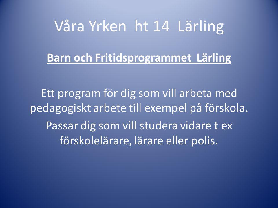 Barn & Fritid Lärling Victor gick Barn & Fritidsprogrammet Lärling och gjorde sin praktik på Nybble förskola.