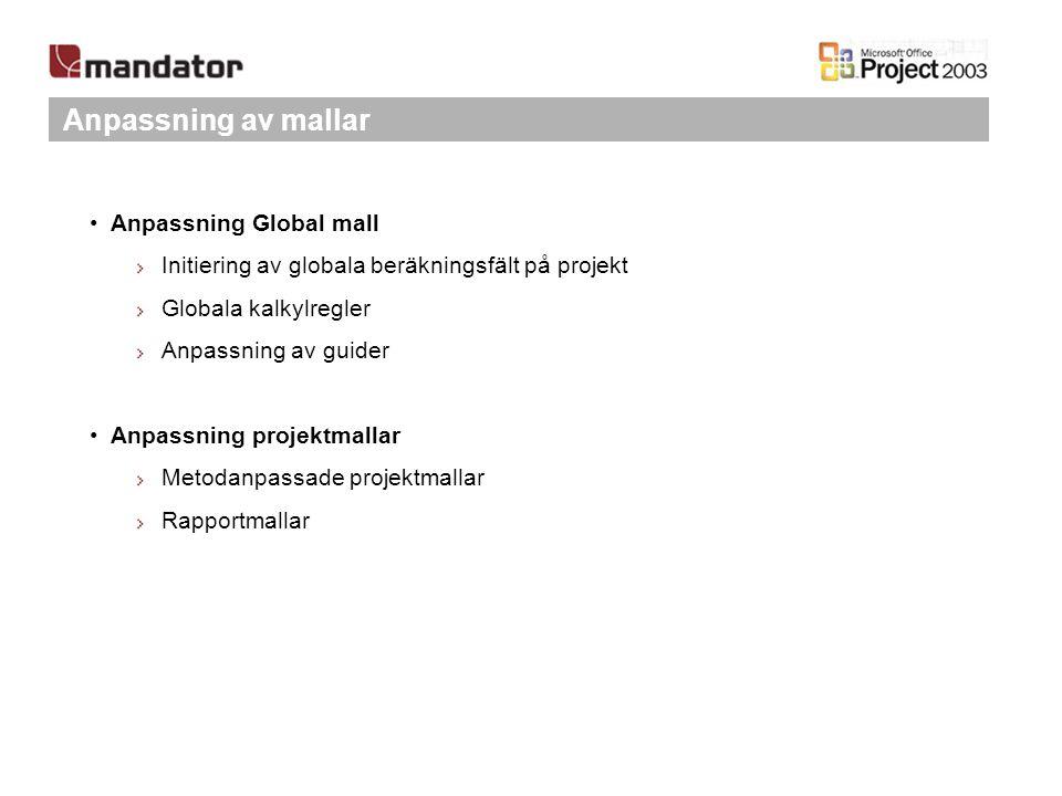 Anpassning av mallar Anpassning Global mall Initiering av globala beräkningsfält på projekt Globala kalkylregler Anpassning av guider Anpassning proje
