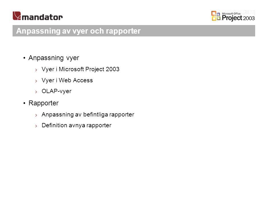 Anpassning av vyer och rapporter Anpassning vyer Vyer i Microsoft Project 2003 Vyer i Web Access OLAP-vyer Rapporter Anpassning av befintliga rapporte
