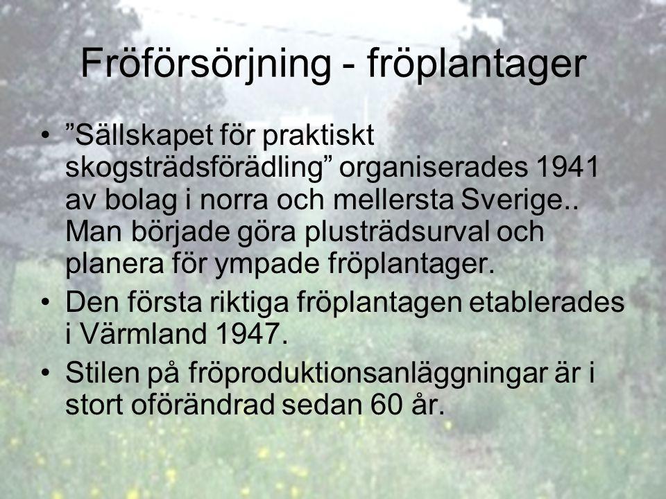 """Fröförsörjning - fröplantager """"Sällskapet för praktiskt skogsträdsförädling"""" organiserades 1941 av bolag i norra och mellersta Sverige.. Man började g"""