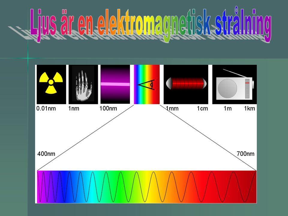 Synbart ljus för människor Vi ser med våra ögon ljus som har våglängderna 400 – 700 nm Vi ser med våra ögon ljus som har våglängderna 400 – 700 nm (nm = nanometer = miljarddelsmeter =0,000000001 m (nm = nanometer = miljarddelsmeter =0,000000001 m Ögat uppfattar olika våglängder som olika färger Ögat uppfattar olika våglängder som olika färger