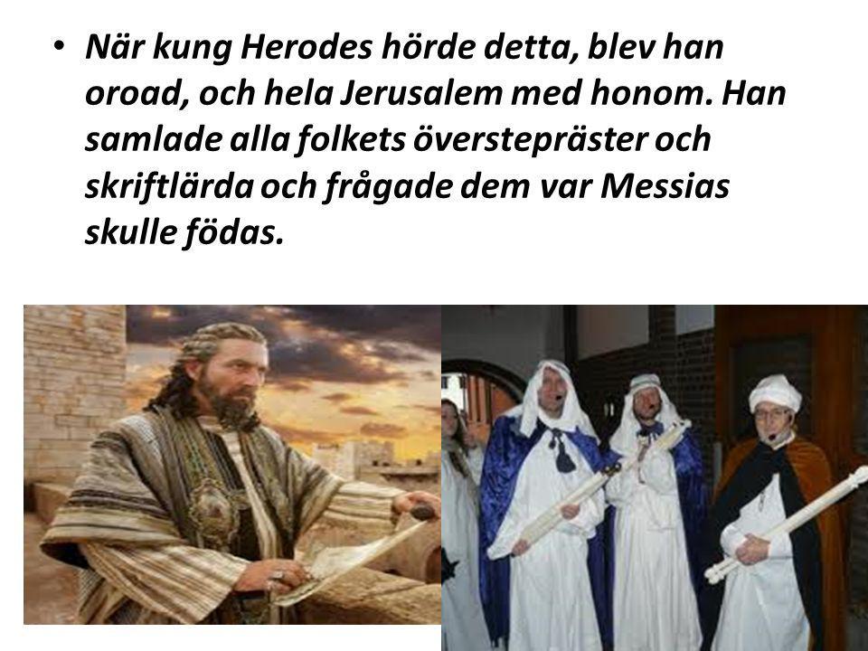 När kung Herodes hörde detta, blev han oroad, och hela Jerusalem med honom. Han samlade alla folkets överstepräster och skriftlärda och frågade dem va