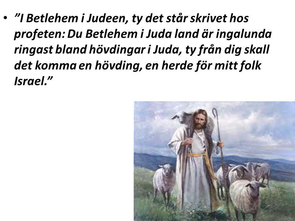 """""""I Betlehem i Judeen, ty det står skrivet hos profeten: Du Betlehem i Juda land är ingalunda ringast bland hövdingar i Juda, ty från dig skall det kom"""