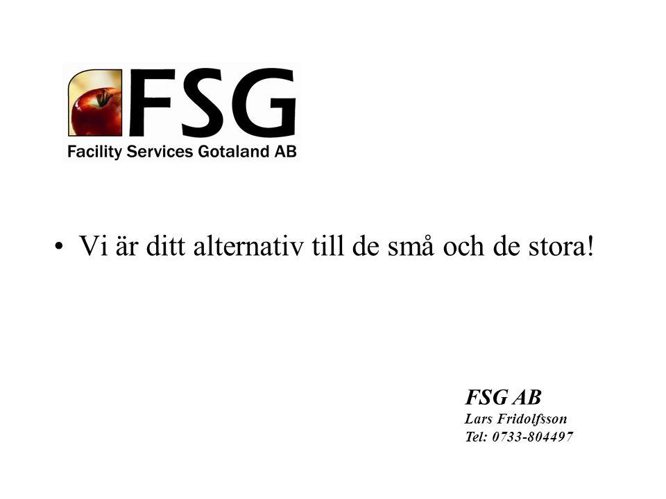 Vi är ditt alternativ till de små och de stora! FSG AB Lars Fridolfsson Tel: 0733-804497