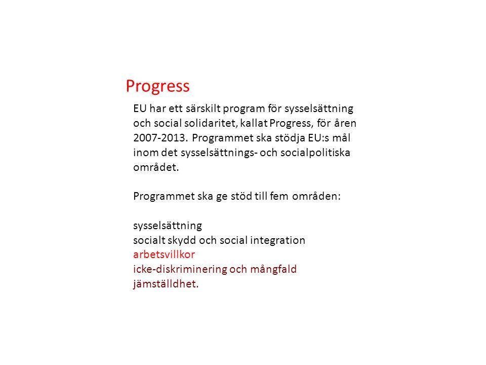 EU har ett särskilt program för sysselsättning och social solidaritet, kallat Progress, för åren 2007-2013.